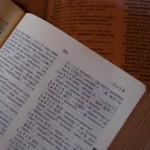 Diccionaris